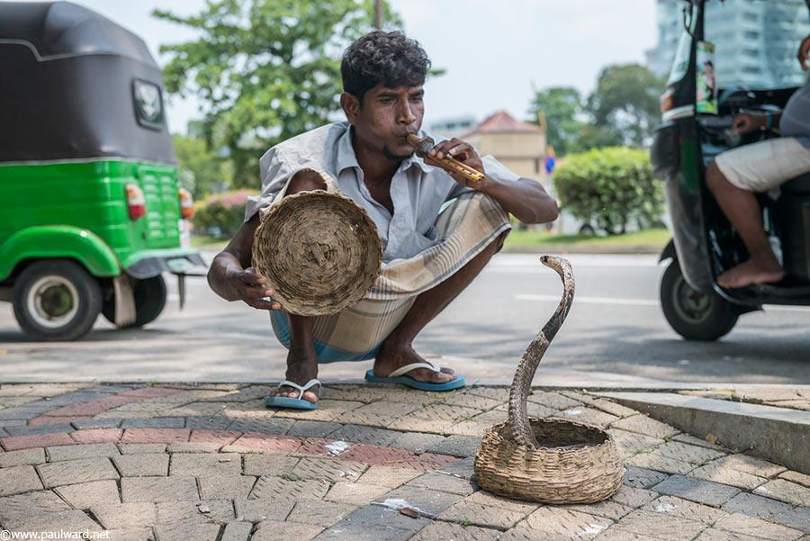 snake charmer in sri lanka by Birmingham travel photographer Paul Ward