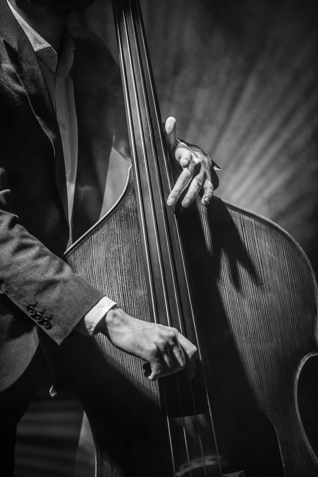 Double bass player by portrait photographer Paul Ward